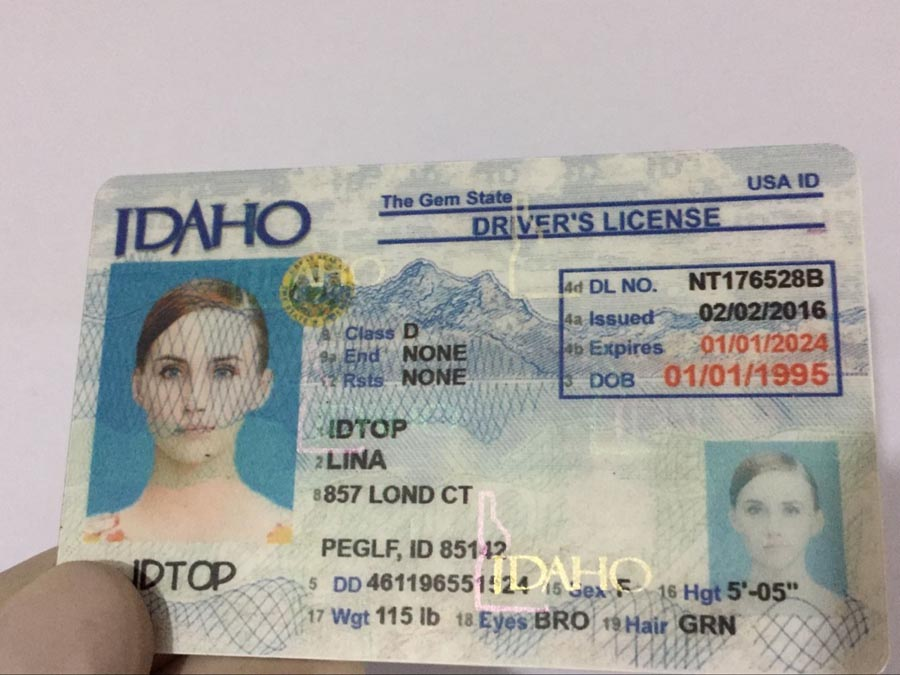IDAHO Fake IDs