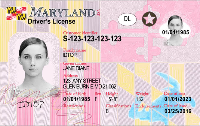 MARYLAND-New Fake IDs