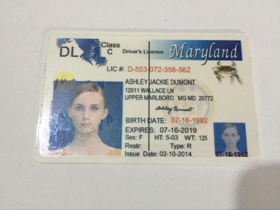 Id Fake Maker Ids fake Cards usa Ids scannable Buy Maryland