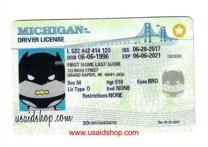 MICHIGAN Fake IDs