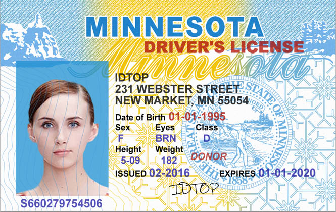 MINNESOTA Fake IDs