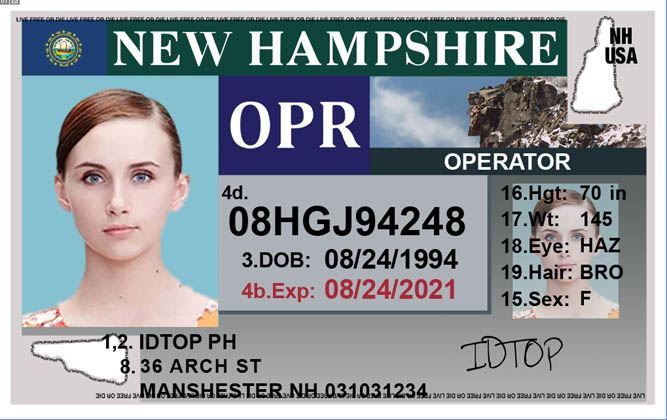 NEW HAMPSHIRE Fake IDs