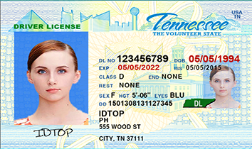 TENNESSEE Fake IDs