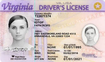 VIRGINIA Fake IDs